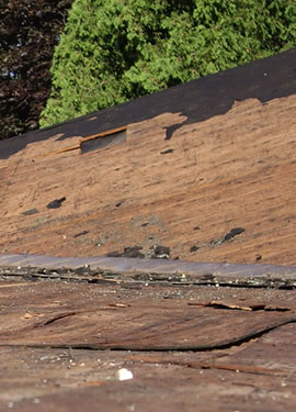 Inspecting The Roof Decking